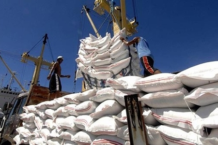 GDVC informed the export of 400,000 tonnes of rice
